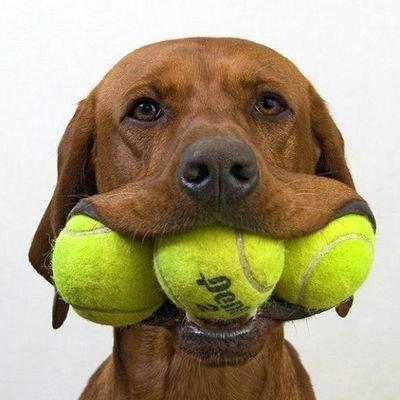 James S. teaches tennis lessons in Cedar Park, TX